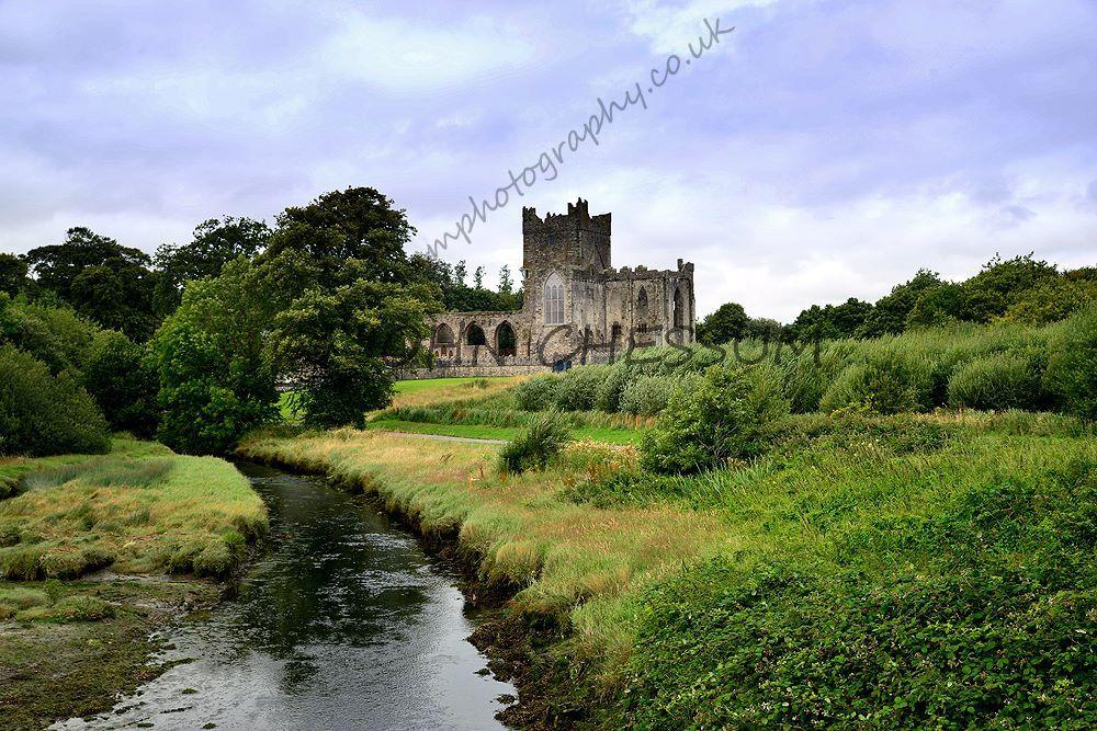 Tintern Abbey, county wexford , Ireland