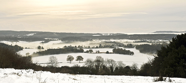 Surrey Hills in Winter