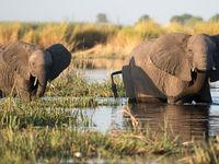 Botswana -6