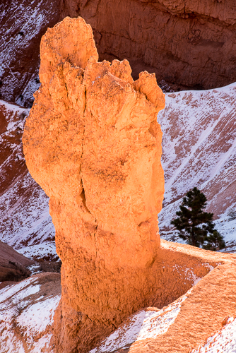 Bryce Canyon -6