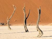 Namibia -10