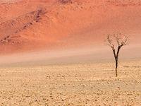 Namibia -2