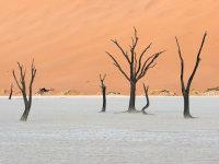 Namibia -6