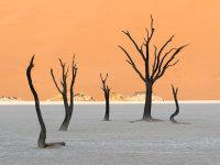 Namibia -7