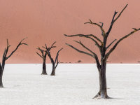 Namibia -8