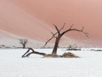 Namibia -9