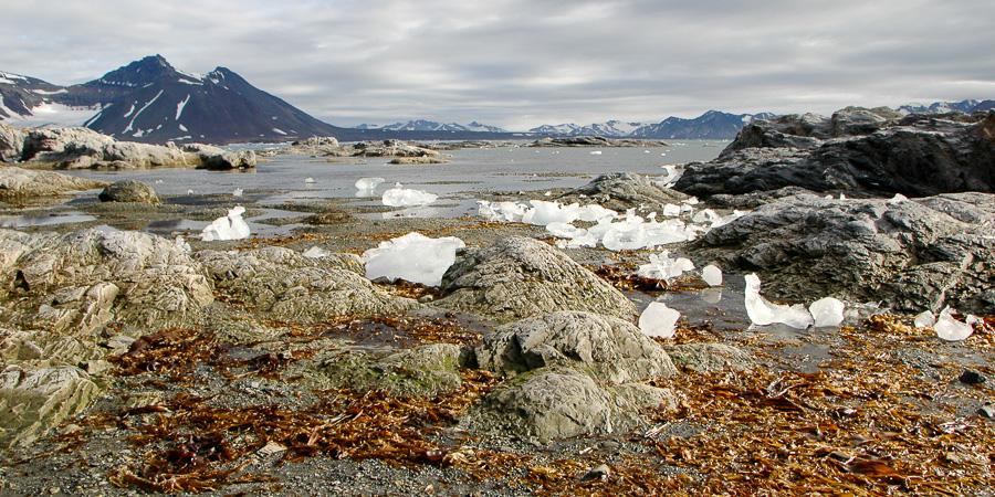 Spitsbergen -23