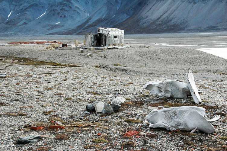Spitsbergen -31