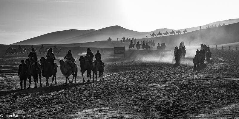 Dunhuang, Camel Trains-3