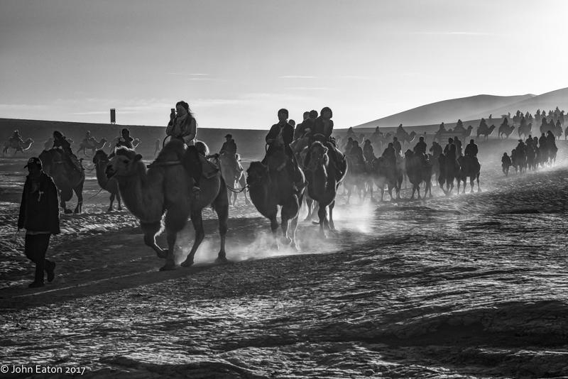 Dunhuang, Camel Trains-4