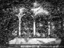 Jewish Cemetery #7