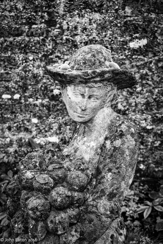 Lady in the Garden #1