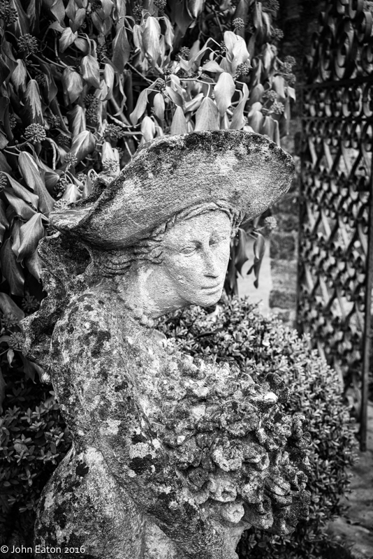 Lady in the Garden #2