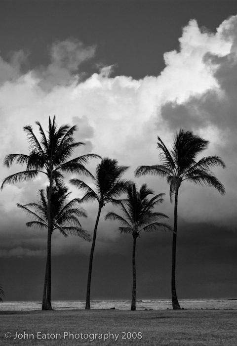 Ka'apa Beach, Stormy Evening
