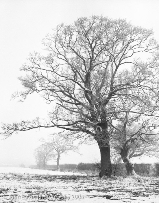 Bleak Midwinter #4