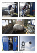 Dursey Island Cable Car