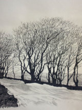 Stark Winter, Elephant Tree's - Original Graphite Drawing - SOLD