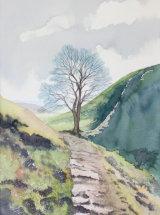 "Walking the Wall to Sycamore Gap - Original Watercolour - 19 ¼"" x 12 ¾"" - SOLD"