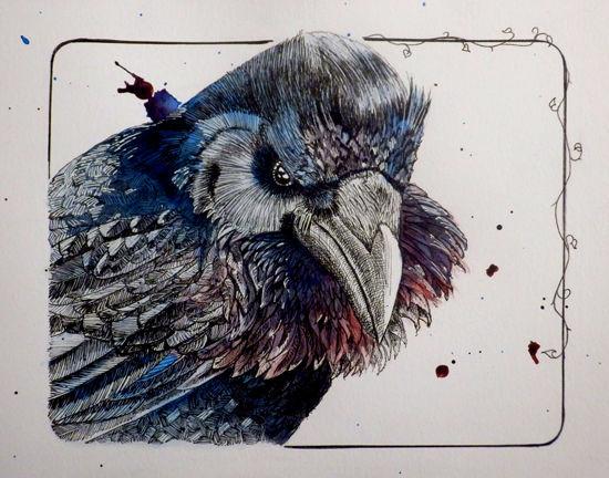 Raven01