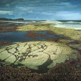 Rock Patterns, Saltwick Bay, North Yorkshire, UK