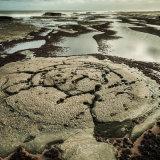 Rock Patterns, Saltwick Bay, North Yorkshire,UK