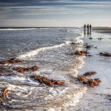 Bamburgh Beach Walk