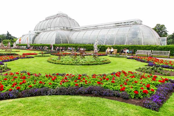 The Palm House at Kew Royal Botanical Gardens