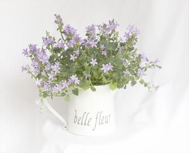 Belle Fleur pastel