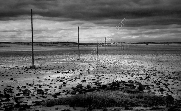 Pilgrims Way, Lindisfarne