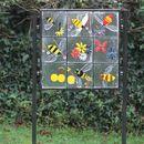 Bees (reframed)