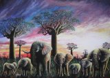 African Sunset (for sale £200)