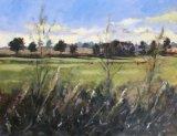 Fields near Ludham Bridge, Norfolk