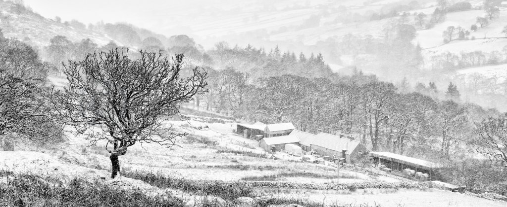 1001 - Farndale Snow Storm PANORAMA