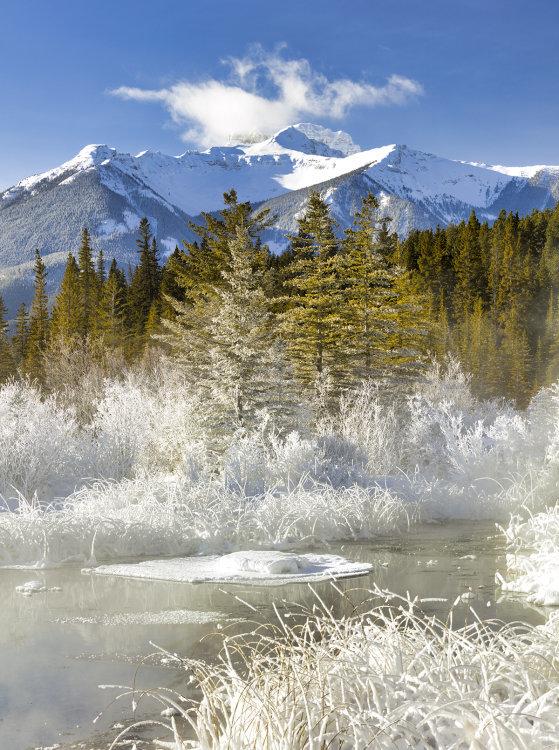 1251 Vermillion Lakes Banff Alberta Canada