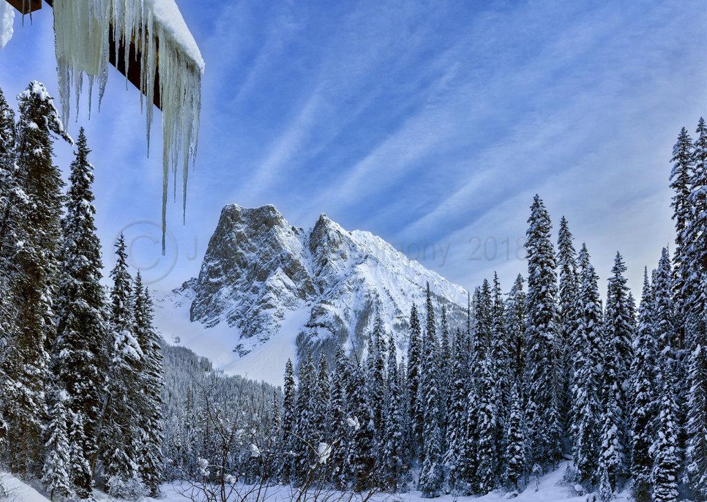 1416 Mt. Burgess, Yoho National Park, British Columbia, Canada