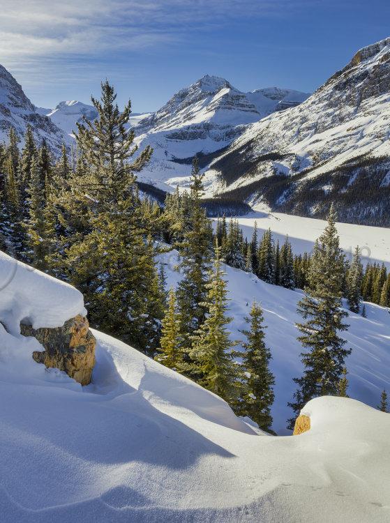 1616 Lake Peyto Alberta Canada