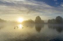 3530 Clumber Park Daybreak