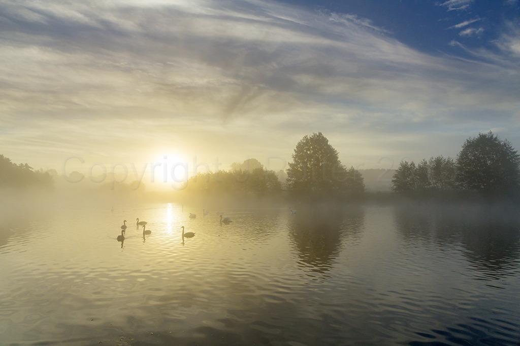 3530 Clumber Park Daybreak, Nottinghamshire