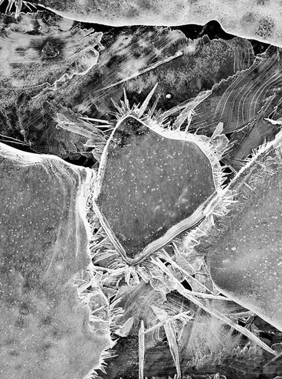 3629 Ice Patterns Loch Morlich