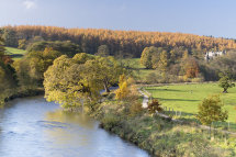 4935 Barden Tower & River Wharfe