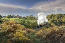 9281 Darnholme Steam Loco