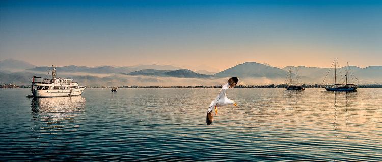 Aegean Dawn