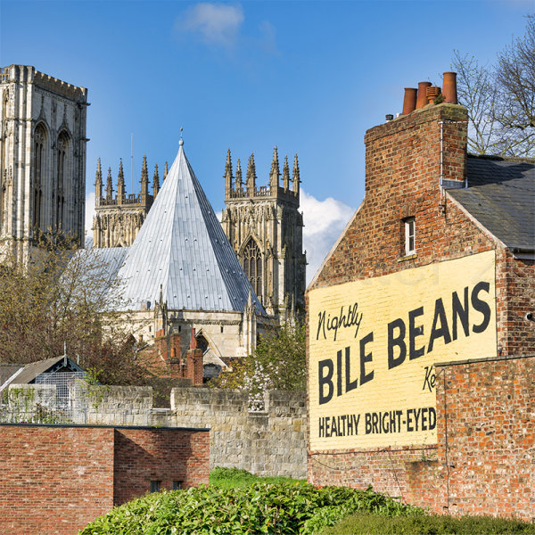 133 York Minster and Bile Beans!