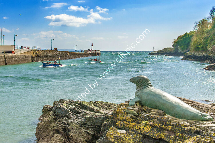 The statue of Nelson the seal, at Looe