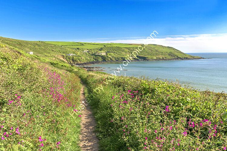 The coastal path, walking towards Rame Head, Whitsand Bay.