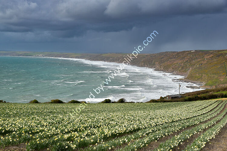 A stormy February at Whitsand Bay.