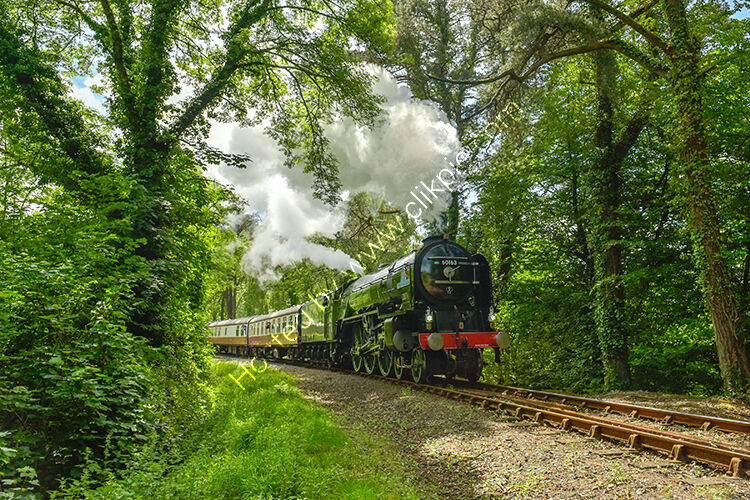 The 60163 Tornado leaving Bodmin Parkway, on the Bodmin Wenford Railway.