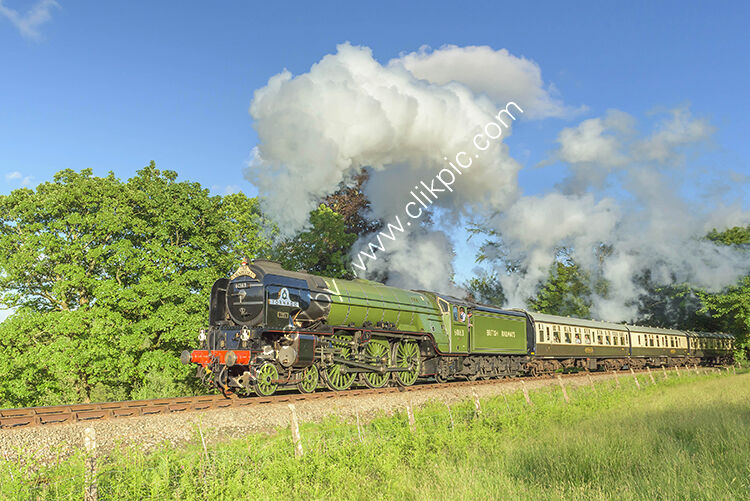 The 60163 Tornado on the gradient leading to Colesloggett Halt. At the Bodmin Wenford Railway.