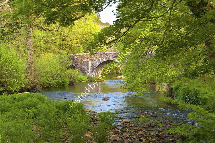 The 15C packhorse bridge crossing the River Fowey at respryn, near Bodmin.