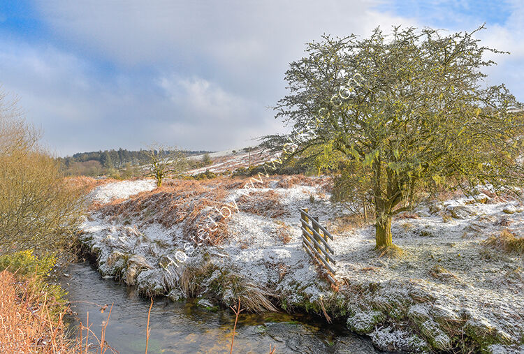 The River Fowey flowing through Draynes valley, on Bodmin Moor.